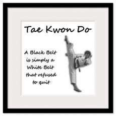 taekwondo quote i like more taekwondo girls taekwondo quotes
