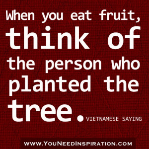 appreciation-gratitude-quotes-When-you-eat-fruit-think-of-the-person ...