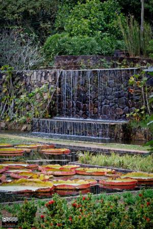 Fazenda Vargem Grande, Jardins de Roberto Burle Marx - Areias, SP ...