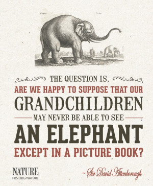 quote from Sir David Attenborough.--I was thinking this very thought ...