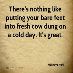 ... putting your bare feet into fresh cow dung on a cold day. It's great