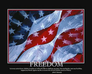 Freedom American Flag Poster 20x16