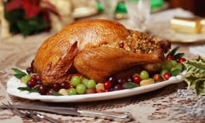 ... christmas turkey is being turkeys scientific name is christmas recipes
