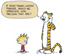 My favorite Calvin & Hobbes quote (sorry for small size)
