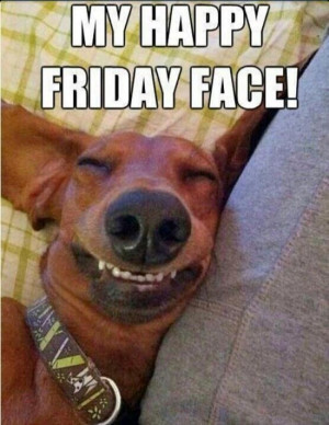 Happy Friday from Nice Dog Rescue