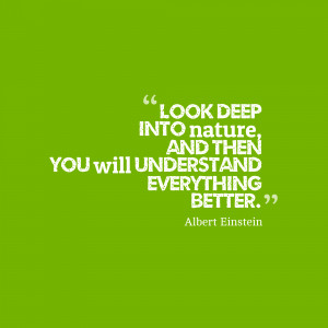 "Daily Quotes: Albert Einstein ""Look deep into nature and then…"