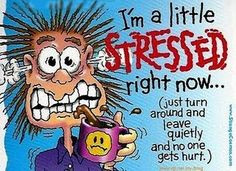 bad day at work humor | Stressed? Why, Yes I am... More