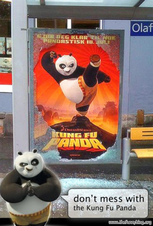 kung-fu-panda-buss-stop-glass-funny-dont-mess