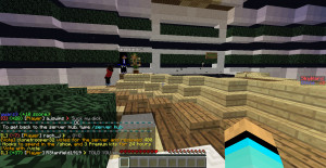 Being Disrespectful Being disrespectful and inappropriate on skywars.