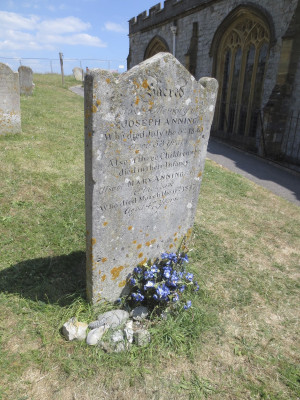 Mary Anning Quotes Mary anning's family grave in