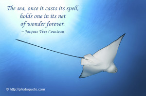 Displaying 15> Images For - Ocean Quotes And Sayings...