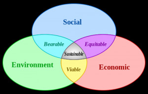 Sustainable living is living that meets the needs of the present ...