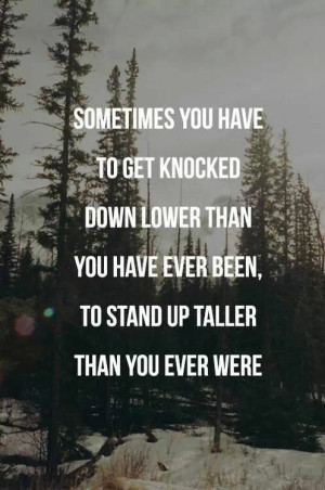 Knocked down lower and harder, but will stand up taller and stronger ...