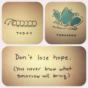 Never lose hope...it's never hopeless