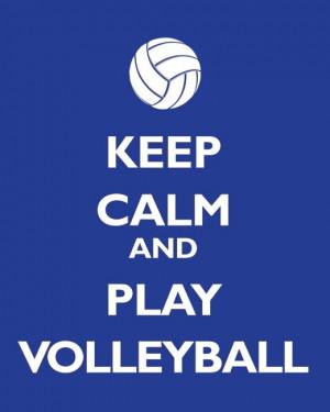 Volleyball Sayings Image