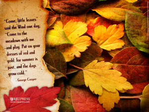 ... to a beautiful Saturday, and your First Day of Autumn 2012. Enjoy