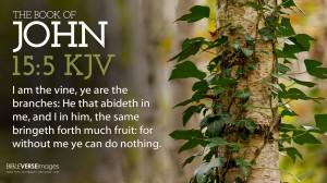 testimoniesofheavenandhell.com/Bible-Verses/wp-co...hn-15-5-I-Am-The ...