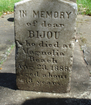 In Memory of Bijou, My Dog and My Best Friend!