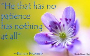 Quotes About Patience HD Wallpaper 4