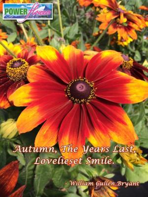 Autumn Garden Flower Quote