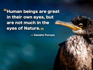 bird quote bird quotes and sayings bird quotes save birds quotes larry ...