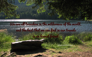 We are all travelers in the wilderness... quote wallpaper