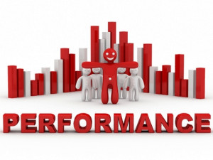 Performance Appraisal of the Performance Appraisal System