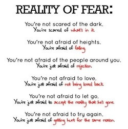 Reality of fear. YES! i always say, i'm not afraid of heights, i'm ...