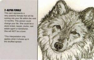 The Wolf Pack Tarot Deck