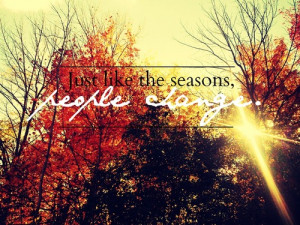 autumn, fall, leaves, quotes, trees, truth