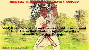 Okinawa Shorinjiryu Karate & Kobudo Organization