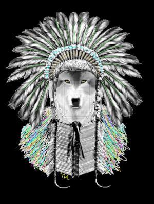 Indian Chief Wolf Tiaknight