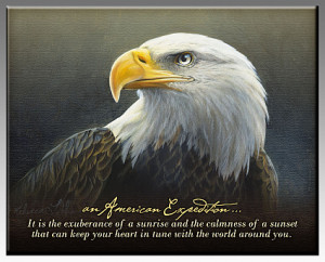 Bald Eagle Inspirational Quotes