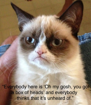 Grumpy Cat Brian Bell...