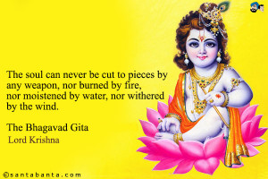 The Soul Can Never Be Cut To Pieces By Any Weapon, Nor Burned By Fire ...