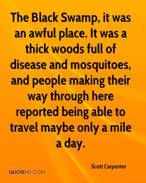 Mosquitoes Quotes