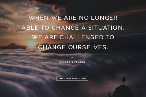 When we are no longer able to change a situation, we are ...