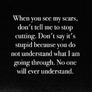cutting suicide quotes quotesgram