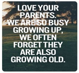 Quotes About Family Love And Support time to love your parents