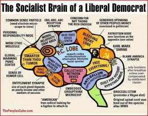 Republican Party Liberal Brain