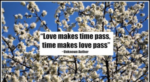Quotes About Time Passing