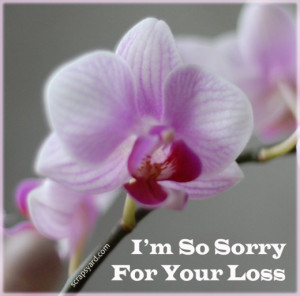 Sympathy Cards Sayings