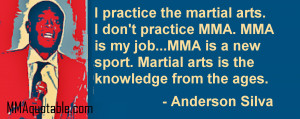 anderson silva on practing martial arts i practice the martial arts i ...