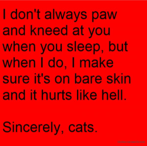 don't always paw and kneed at you when you sleep, but when I do, I ...