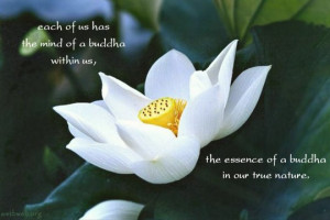 Each of us has the mind of Buddha within us, The essence of a Buddha ...