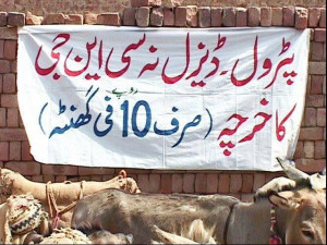Best Funny Signboards in Urdu: Rent-a-Donkey for Rs.10 per hour, no ...