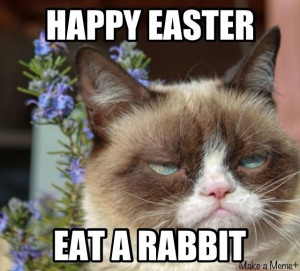 grumpy cat & easter http://sulia.com/channel/cats/f/4e408546-740b-4771 ...