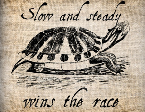Antique Turtle Vintage Aesop Fable Slow Steady Digital Download for ...