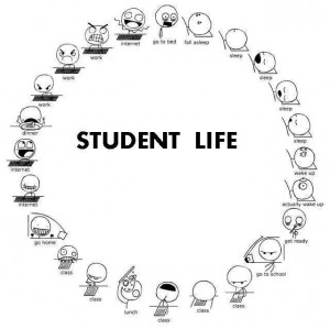 Funny College Life Quotes College life