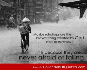Maybe Raindrops Are The Bravest Thing Created By God Want To Know Why ...